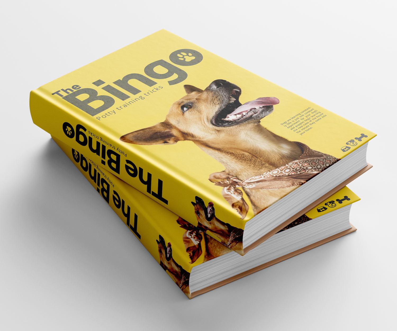 BINGO-BASICS-geneza-brands